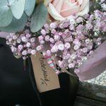 Amanda in Bloom profile image.