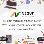 Negup Solutions profile image.