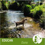 EDUCAN USA profile image.