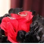 GlazePhotography1, LLC profile image.