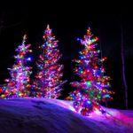 Festive Landscaping & Lighting LLC profile image.