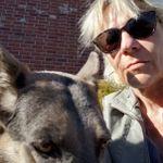 Denver Dog Whisperer profile image.