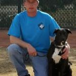 East Valley K9 Services profile image.
