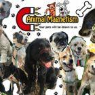 Animal Magnetism Pet Professionals logo