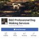 B&D Professional Dog Walking Service logo
