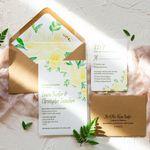 Jeanette Pidi Design LLC profile image.