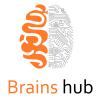 Brains Hub profile image
