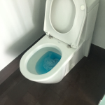 BLUE FLAMINGO CLEANING SERVICE profile image.