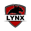 Lynx Security Group profile image