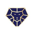 Lions Assurance Financial