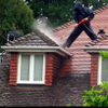 Eco roof & driveway cleaning profile image