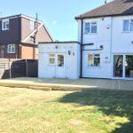 Lewis Landscapes Essex Ltd profile image.