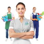 IB Clean Solutions » House Cleaning Services profile image.