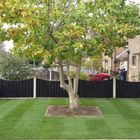 Alfred garden and landscape services
