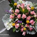 Dima Floral Designs profile image.