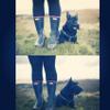 SOUTH-SIDE DOG WALKING profile image
