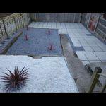 Kings Garden Specialists LTD profile image.
