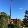 Wood lands tree care profile image