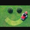 Dslandscape gardening profile image