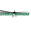 Revenue Boomers Social Media Marketing Agency profile image