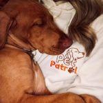 Pet Patrol profile image.