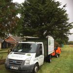 Branch management tree services profile image.
