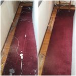 Healthy House Cleaning Services llc. profile image.