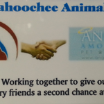 Chattahoochee Animal Clinic profile image.