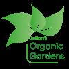 Julian's Organic Gardens profile image