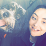 Lou's wagtastic dog walking services profile image.