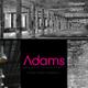 Adams Building Consultancy Ltd logo