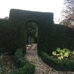 Garden Maintenance profile image.