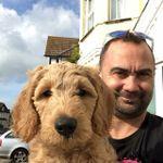 Folkestone Dog Services profile image.