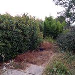 Mimosa Garden Services profile image.