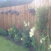 Dyce Fencing & Garden profile image