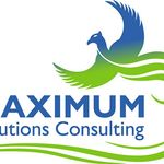 Maximum Solutions Consulting Ltd profile image.