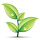 Ardicia Landscaping logo