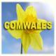Comwales Ltd logo