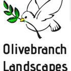 Olive branch landscapes LTD logo