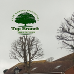 Top Branch Tree Works profile image.
