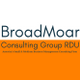 BroadMoar Consulting Group, Raleigh-Durham  logo