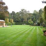 David James Gardens profile image.