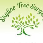Skyline Tree Surgery