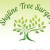 Skyline Tree Surgery profile image