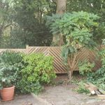 Elite Fencing And Decking profile image.