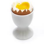 Egghead Designs profile image.