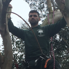 Primrose tree care and garden services limited