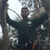 Primrose tree care and garden services limited profile image