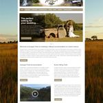 Spyderweb Design profile image.