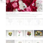 CKdesign   WEB & SEO services profile image.